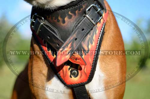 Easy-to-wear leather harness