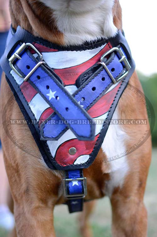 Wide soft padded chest plate for American Pride leather Boxer harness
