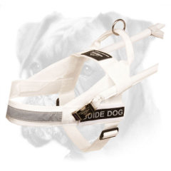 Fantastic Guide Boxer Harness of Nylon