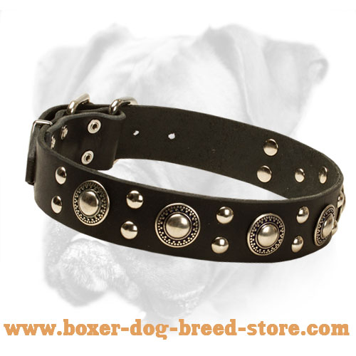'Rock n Roll' Boxer Leather Dog Collar