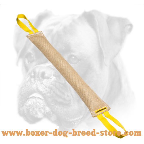 Large Jute Bite Tug for Young Boxer Training