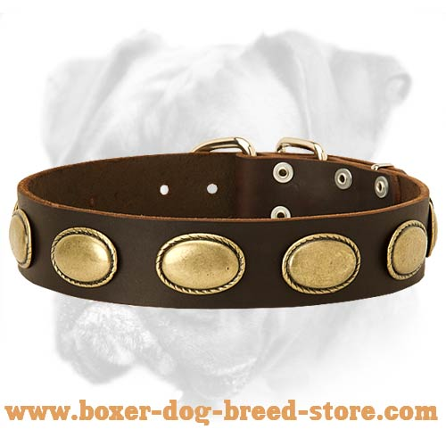 Deluxe Leather Collar Adorned with Vintage Oval Plates