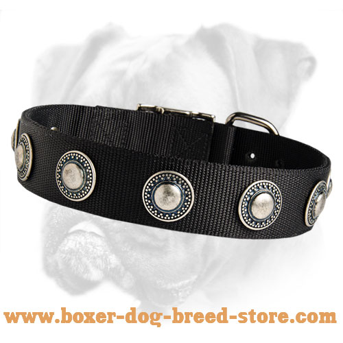 Deluxe Nylon Boxer Collar with Silver Conchos