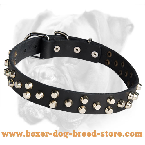 Exclusively Designed Boxer Leather Collar