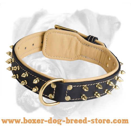 Luxury Leather Collar with Brass Spikes