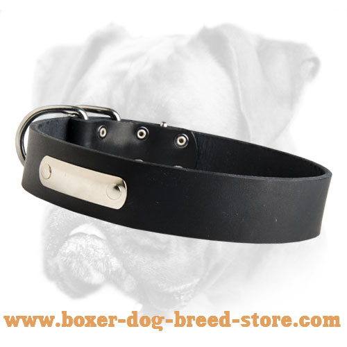 Simply Designed Leather Collar with Name Tag for Boxer Breed