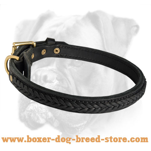 2 Ply Braided Leather Boxer Collar