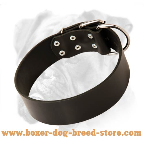 Boxer Leather Collar Riveted For Extra Durability