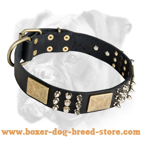 Unique Leather Boxer Collar with Charming Plates, Spikes and Pyramids