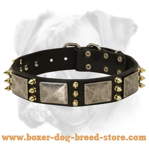 Gorgeous Leather Collar Fabulously Designed