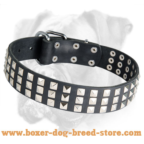 Royal Quality Leather Boxer Collar with Nickel Pyramids for Everyday Use