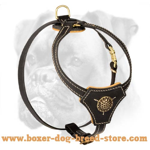 Tracking and Walking Royal Leather Harness for Boxer Puppy