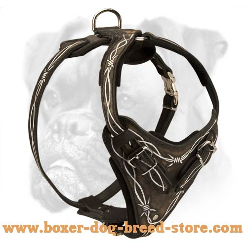 Barbed Wire Hand Painted Dog Harness for Boxer