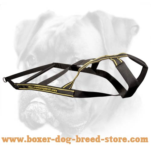 Dog weight pulling harness for Boxer