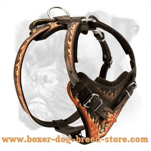 Boxer Leather Harness with Flames Painting