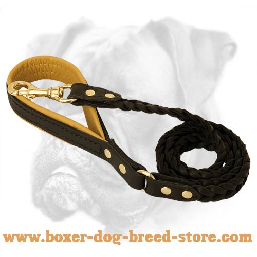 Braided Handmade Leather Canine Leash with Gold Color Hardware for Boxer Dog