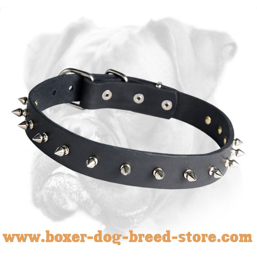 Elegant Leather Boxer Collar with Nickel Spikes