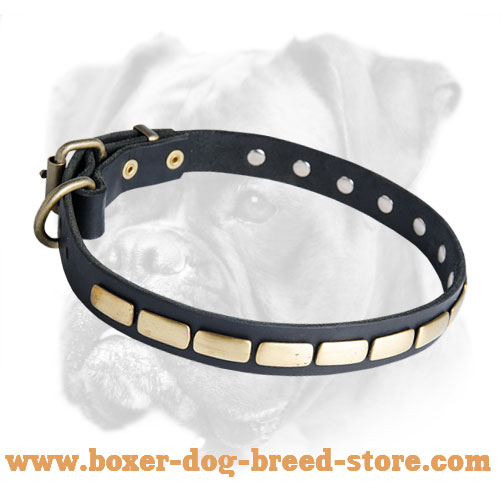 Leather Special Boxer Collar With Plates
