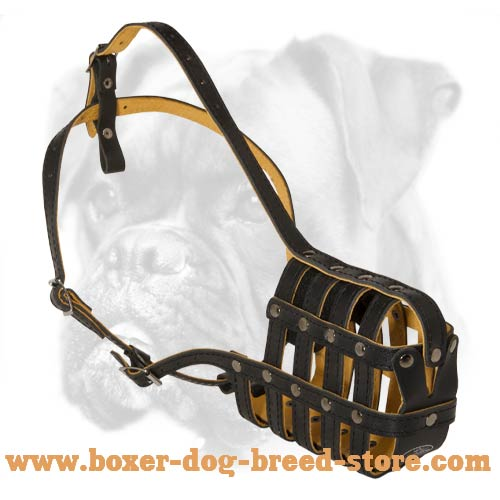 Royal Leather Basket Muzzle for Boxer