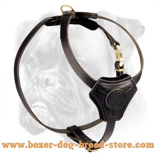 Special Leather Decorative Harness for Boxer Puppy