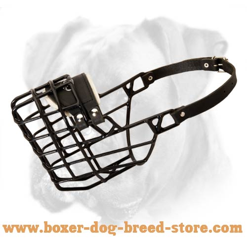 Wire Dog Muzzle with Winter Coating for Boxer