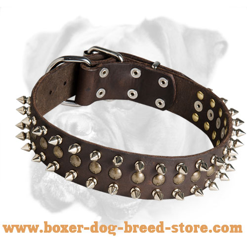 Fashionable Leather Boxer Collar for Walking