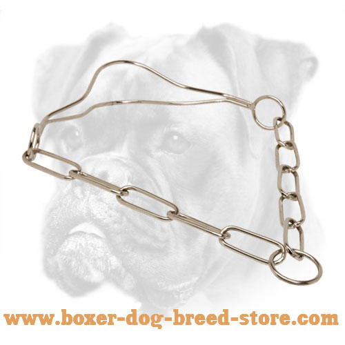 Quality Chrome Plated Show Boxer Collar