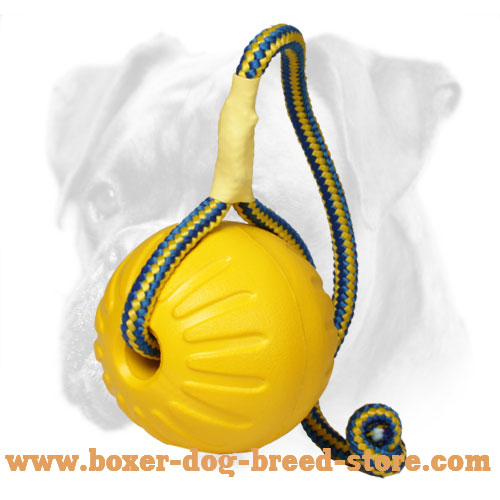 Foam Boxer Ball for Training 'High Fly' for Large Dogs