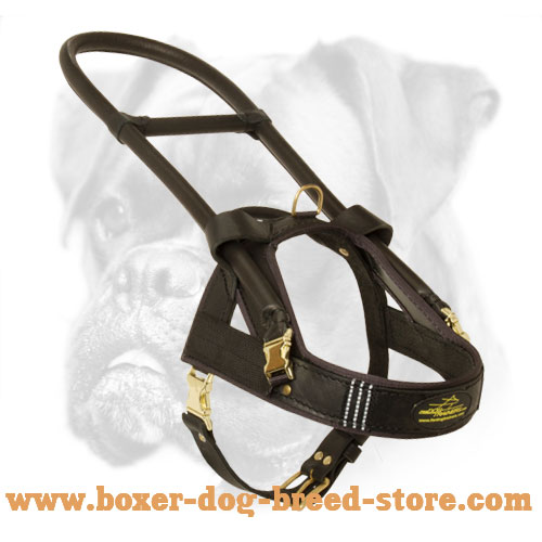 High-End Guide and Assistance Leather Boxer Harness with Handle