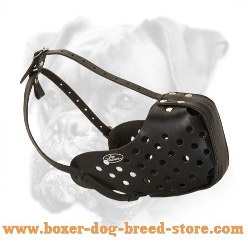 Agitation/Attack Training Muzzle for Boxer Breed