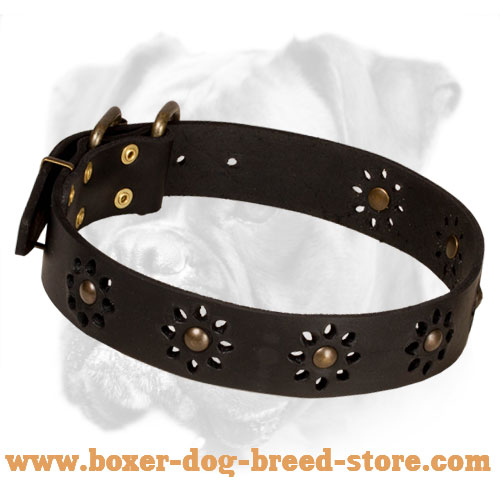 'Spring mood' Leather Boxer Collar for Walking