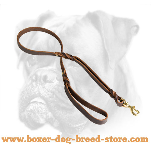 Braided Leather Boxer Leash with Additional Handle - Click Image to Close