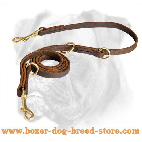 Multifunctional Leather Boxer Leash for Walking and Training - Click Image to Close