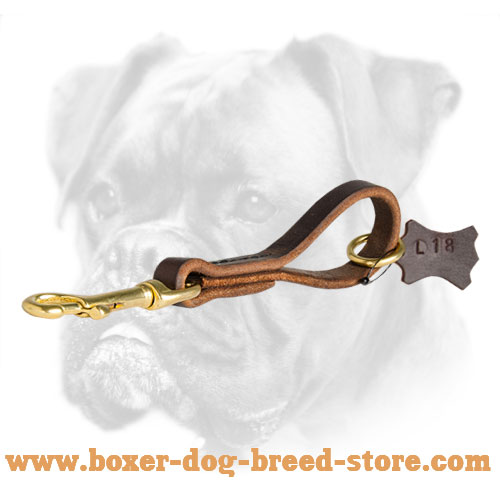 Fast Car Grab Boxer Leather Leash