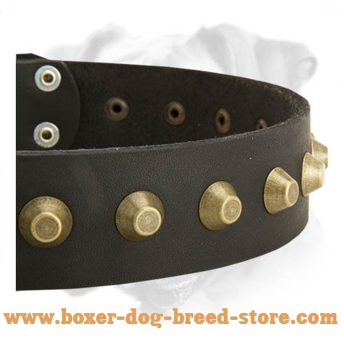 Leather Collar with Brass Pyramids for Boxer