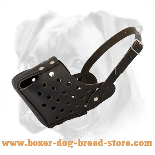 Best Agitation/Training Leather Boxer Muzzle for Successful Work
