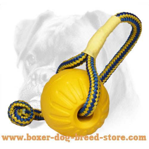 "Foam Boxer Bite Ball for Training ""Go and Get It"" for Medium Dogs"