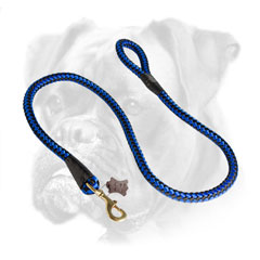 Fancy blue and black cord nylon Boxer leash for walking