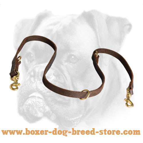 Rust Proof Brass Snap Hook and O-ring for Boxer Leash
