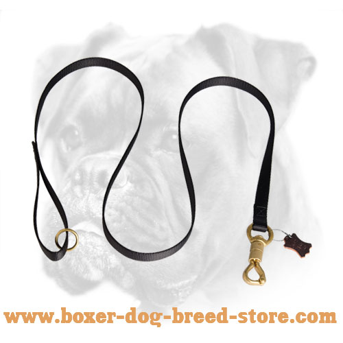 Nylon dog leash for Boxer