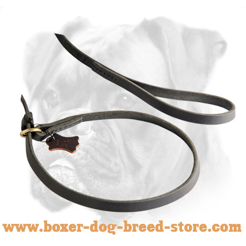 Boxer Leather Leash plus Collar