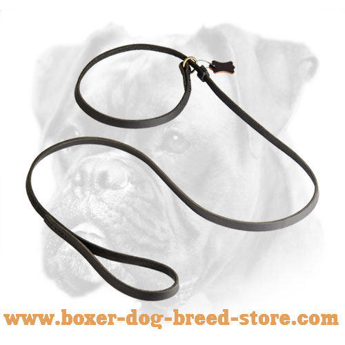 Boxer Multitask Leather Leash