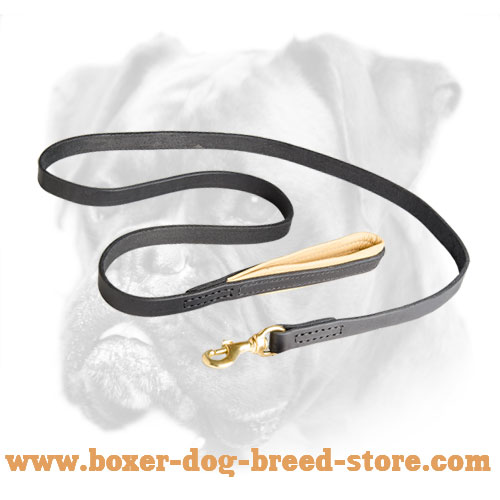 Leather Boxer leash with reliable brass snap hook