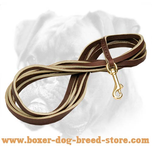 Duly made strong Boxer leash