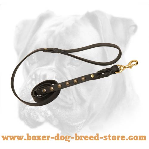 Leathern leash for excellent control of your Boxer