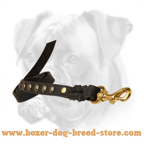 Secure control of your Boxer dog