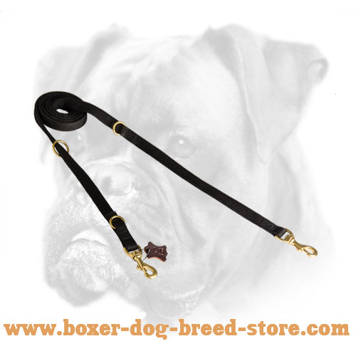 Nylon dog leash with sturdy fittings