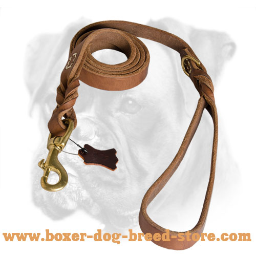 Boxer Leather Leash with Brass Hardware