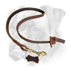 Leather Boxer leash for extra control