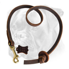 Pocket genuine leather leash for Boxer